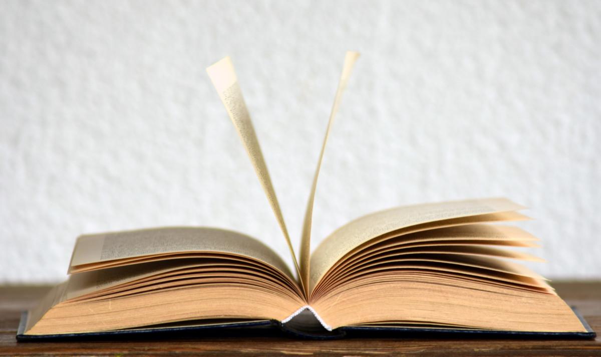 Könyv lapokkal