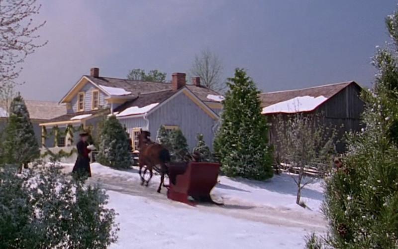 A ház, aminek a tetejéről Anne leesett