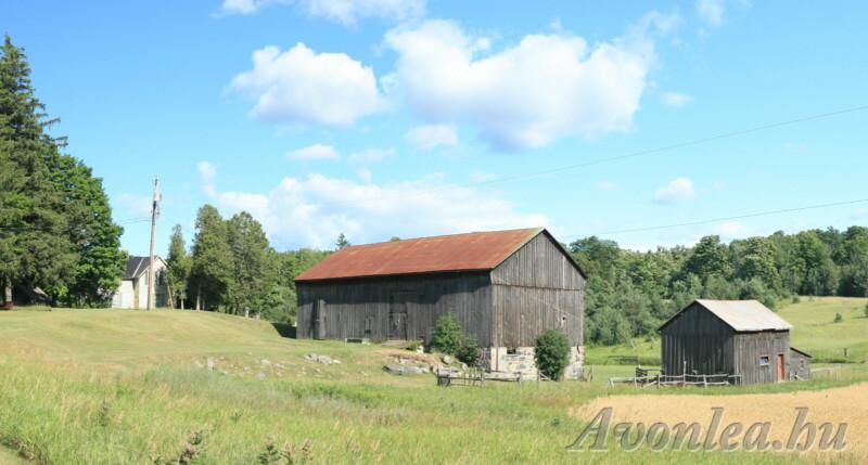A tanya a pajtával az előtérben, a fehér színű házzal a háttérben 2007-ből